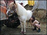 Zoophilie gratuite cheval
